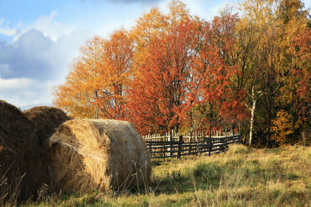 Warm and colorful autumn in the countryside. Harvested hay.