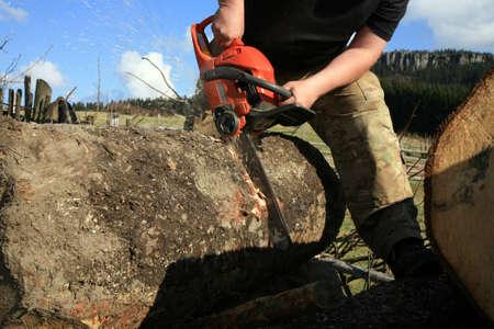 Sägemehl Fliegen wie ein Mann schneidet einen umgestürzten Baum in Scheite Standard-Bild