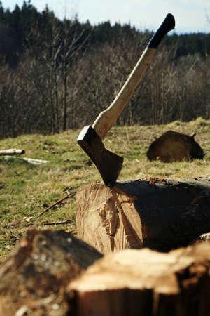 Lumberjack Equipment - ax  Chopping trees for firewood, country job photo
