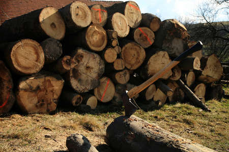 chopping: Lumberjack Equipment - ax  Chopping trees for firewood, country job
