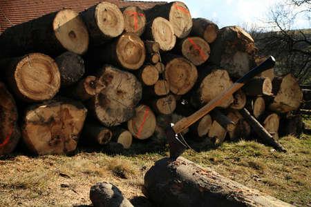 Lumberjack Equipment - Axt Chopping Bäume für Brennholz, Land Job Standard-Bild