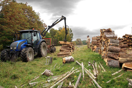 Unloading firewood  Winter fuel supplies to villages in the mountains  Autumn works  Stock Photo