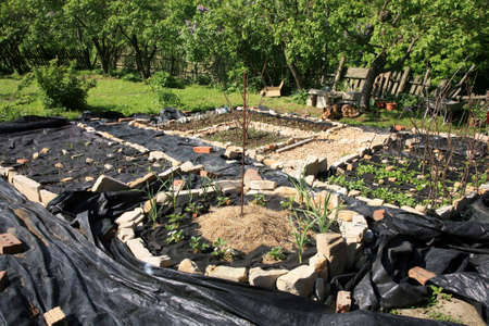 Building a small, backyard vegetable and herb garden  Formal garden modeled on the old monastery gardens  Pasterka village in Poland, Stolowe   Table   Moutains  photo