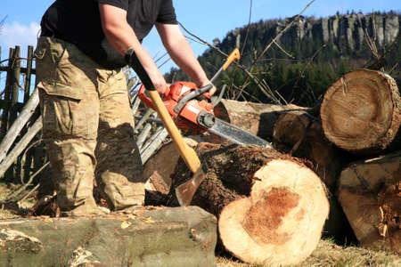 Sawdust flies as a man cuts a fallen tree into logs  photo