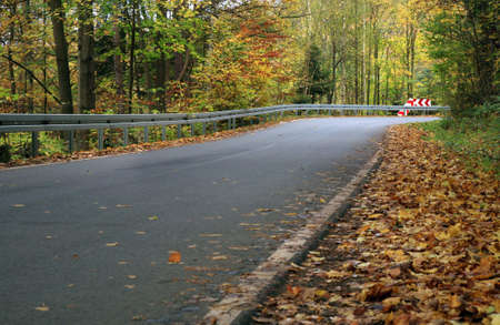 speedway park: Traffic barrier on the mountain, winding road. Gold autumn forest.