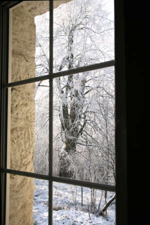 covered in snow: Old, country home windows with winter view of snowy tilia trees. Stock Photo