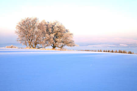 sudetes: Winter meadow in Table Mountains in Poland Sudetes by sunrise.