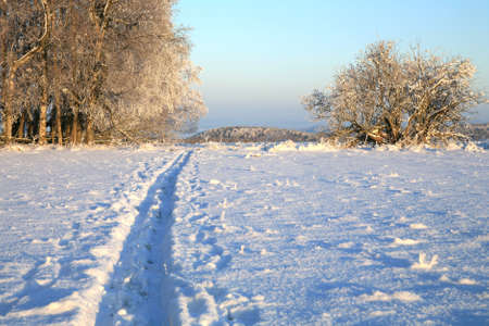 sudetes: Empty cross-country ski track and winter meadow in Table Mountains in Poland Sudetes by sunrise. Stock Photo