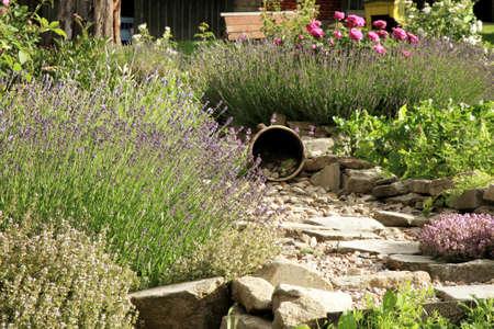 Landhausgarten von landestypischen Stil. Frühlingskräuter und Gemüse.