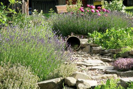 Landhuis tuin in rustieke stijl. Lente kruiden en groente. Stockfoto