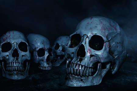 Human skulls on dark background