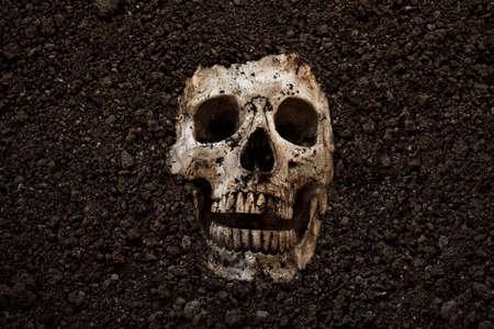 Human skull buried halloween bakground