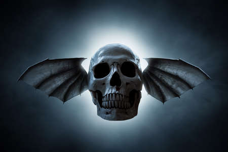 Skull with wings on dark background