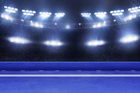 Karate tournament arena, sport concept Фото со стока