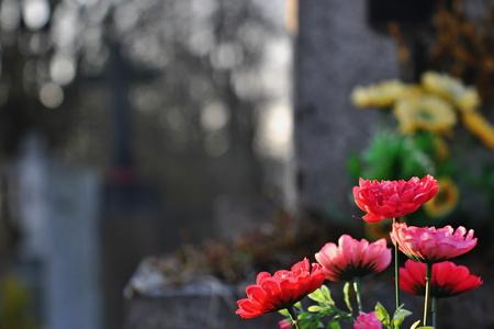 Flores en una tumba