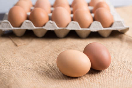 Eggs in the egg panel on cloth background.