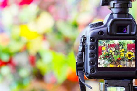 spontaneous: Photographic works, photograph