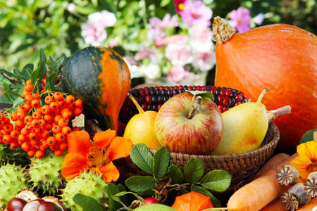 Autumn fruits,  thanksgiving photo