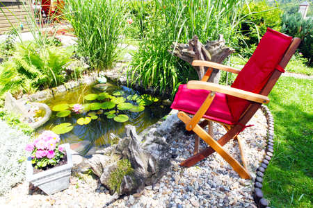 In the garden pond  Stockfoto
