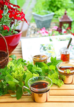 Garden magazine and tea Stock Photo - 21696973