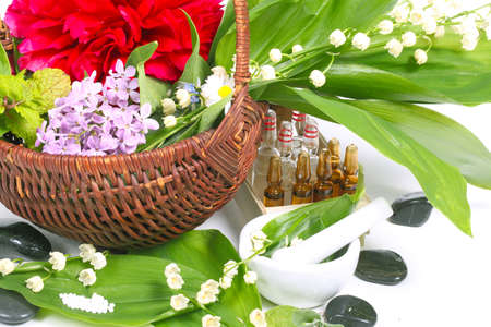 Globules, medicinal herbs, healing stones