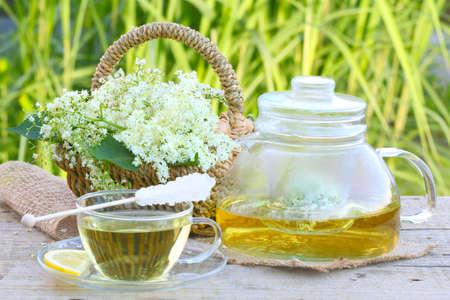 Elderflower tea, elder Imagens