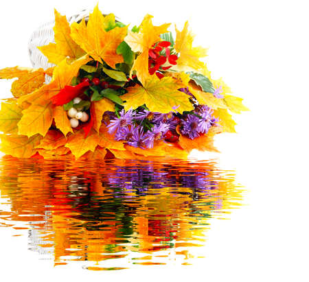 Autumn bouquet with water Reflection photo