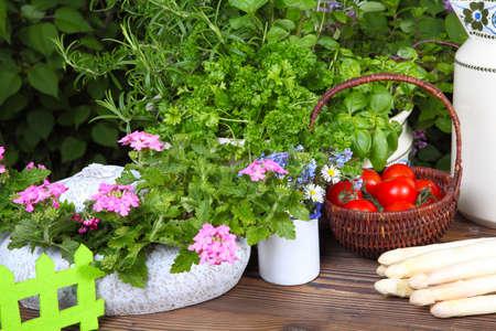 harvest time: Garden table at harvest time