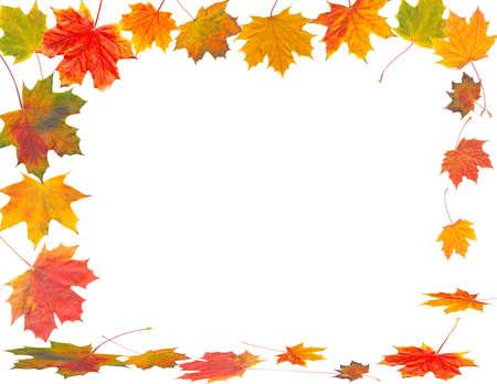 autumn motif: autumn frame Stock Photo