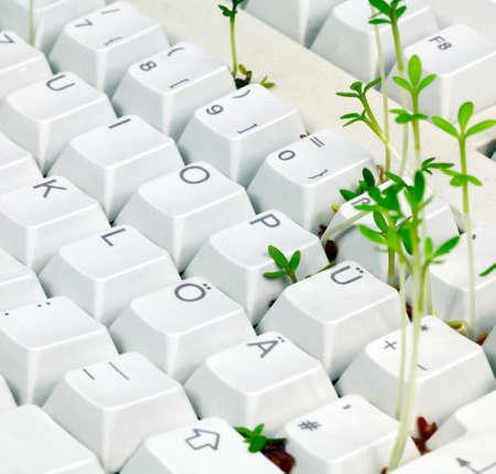 Pc keyboard, green IT