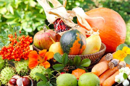 Thanksgiving, autumn fruits  photo
