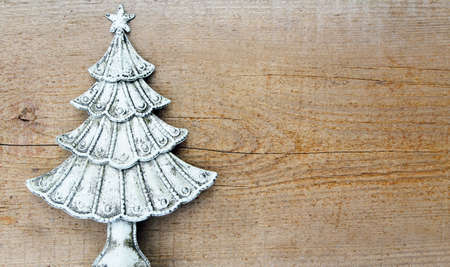Fir tree on wooden background photo