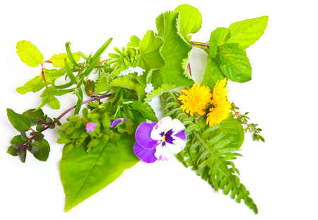 Medicinal herbs and globules on white photo