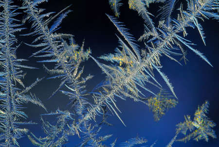 ice crystals macro photo