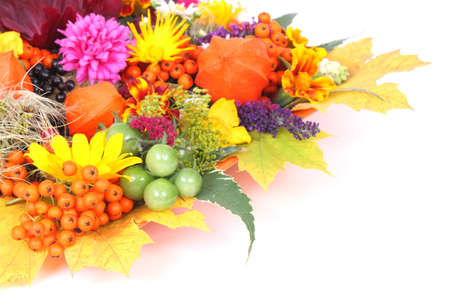 autumn motif: Greeting card autumn Stock Photo