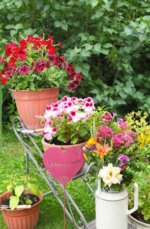 path cottage garden: Welcome to the Garden