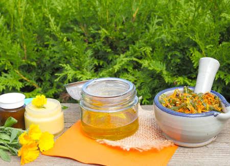 Make ointment of calendula flowers Standard-Bild