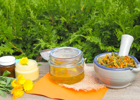 Make ointment of calendula flowers Standard-Bild