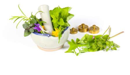 medicina natural: Aislado Homeopatía
