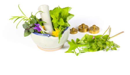 natural medicine: Homeopathy isolated