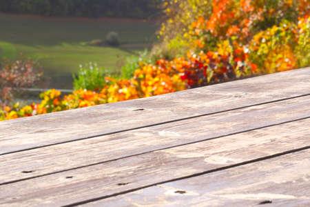 hojas parra: Mesa de madera delante de las hojas coloridas del vino Foto de archivo