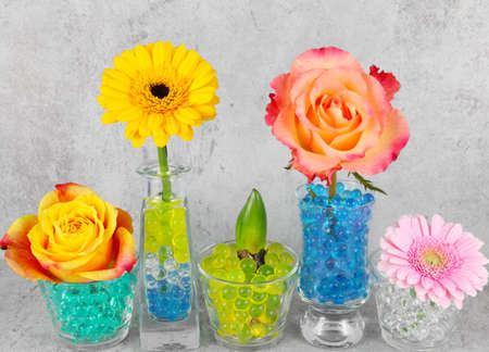 congratulation card: Table decorations, congratulation card