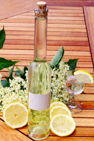 Elderflower drink photo