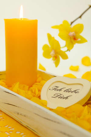 Yellow candle and orchid flowers photo
