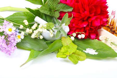 globules: Globules, medicinal herbs