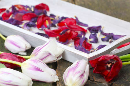 flowerpower: Dried flowers, potpourri is made  Stock Photo