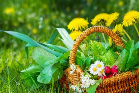 Collected wild herbs in basket  Banco de Imagens