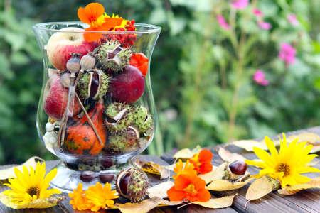 Herbst-Dekoration Standard-Bild - 29121179