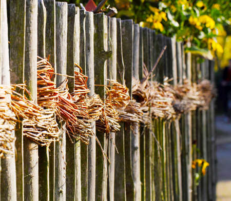 demarcation: Willow rods at the garden fence