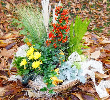 autumn arrangement: Autumn arrangement on foliage meadow  Stock Photo